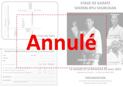 Stage adultes